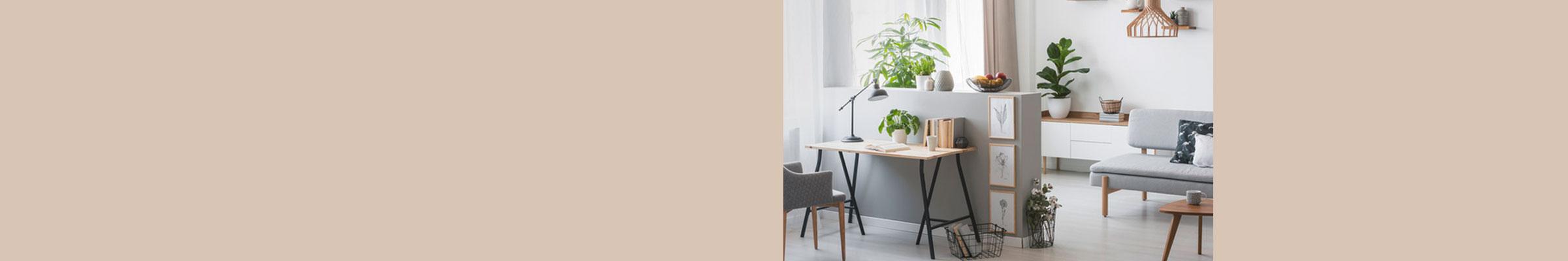 Die Freiräumerin - Dein Power-Home-Office - Feng Shui im Büro